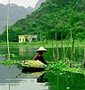 Discover the Tropical Rainforest & Halong